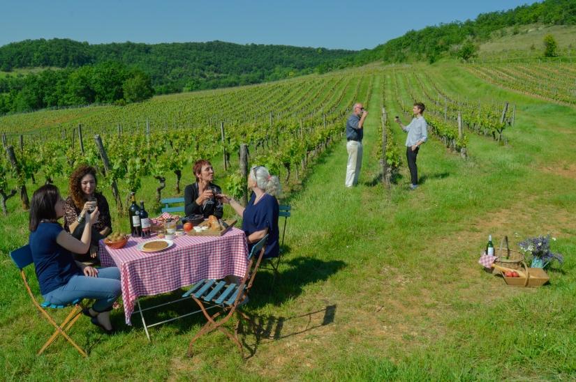 Visite Vignobles Cahors