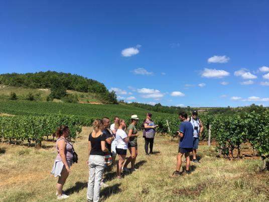 Visite caves vin de cahors