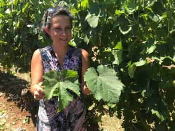 Visite vignobles Lot On Tours
